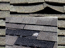 curling shingles - warped shingles - buckling shingles