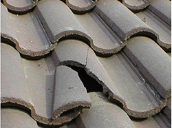 missing shingle - missing shingles - broken shingles